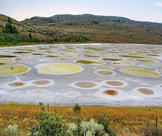 World's Strangest Natural Wonders: Spotted Lake, British Colombia (<1 mile from Washington State border)