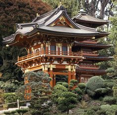San Francisco's Top 10 : Golden Gate Park - Japanese Tea Garden    This eternally delightful garden is full of refined detail: bonsai trees, rock gardens, exotic plantings, and pagodas.