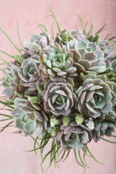 Ideas para ramos de novia en primavera: Un ramo de suculentas muy suculento