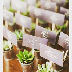 This is the cutest idea for name cards we have ever seen! #namecards #placecards #weddingplaning #weddingday #weddingdetails #weddingpaper #weddingnapa #napanapawedding #napavalley #succulentwedding