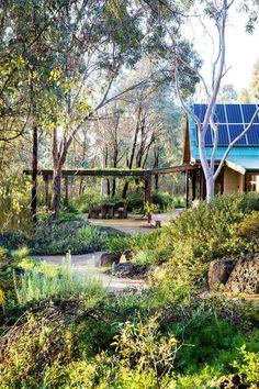 11 native Australian garden design ideas to inspire Melbourne landscape designer, Sam Cox has shaped Plans Architecture, Architecture Design, Australian Garden Design, Australian Native Garden, Australian Bush, Amazing Gardens, Beautiful Gardens, Unique Gardens, Landscape Architecture