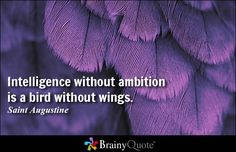 Intelligence without ambition is a bird without wings. - Salvador Dali #inspirational #QOTD