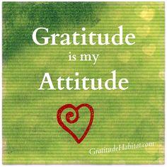 Gratitude.  Gratitude is my Attitude!  Oh yes!  www.GratitudeHabitat.com #gratitude-attitude #attitude