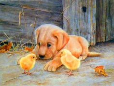 Shirley Deaville Cute Puppies, Cute Dogs, Dogs And Puppies, Animals And Pets, Baby Animals, Cute Animals, Cross Paintings, Animal Paintings, Art Through The Ages