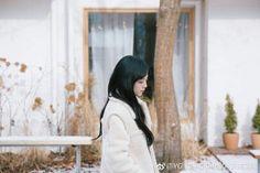 Weibo update