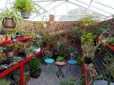 This walipini or underground greenhouse is located in New Mexico. It weathers the extreme temperature swings and creates a safe place for hundreds of plants.