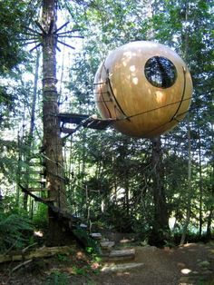 Free Spirit Spheres - Qualicum Bay, B.C. (about a third the way up Vancouver Island, just north of Nanaimo) - 125-300 / nt.