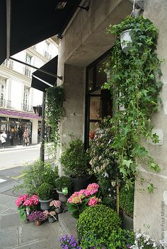 Flower Shop by Paris in Four Months, via Flickr