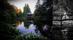WEDDING AT HATLEY CASTLE | JEN STEELE Hatley Castle, Victoria Bc Canada, Vancouver Island, British Columbia, Roads, Acre, University, Around The Worlds, Wedding Photography