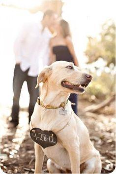 Save the Date Hochzeit, wedding, Einladungen Hochzeit, Blumensamen, Besonderes Fotoshooting, Magnete www.weddinghelfer.de