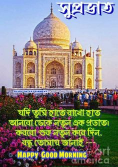 Good Morning Tea, Good Morning Photos, Good Morning Messages, Bangla Quotes, English, Wallpapers, Beautiful, Good Morning Wishes, Wallpaper