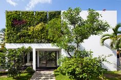 Living Wall Planted Exterior Section of Thao Dien House in Vietnam