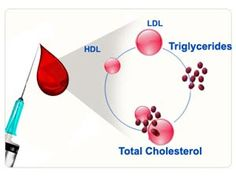 #Triglycerides #BloodTest Results Explained