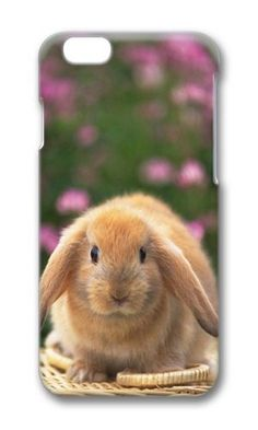 Cunghe Art iPhone 6 Case Custom Designed PC Hard Phone Cover Case For iPhone 6 4.7 Inch With Lovely Rabbit Phone Case https://www.amazon.com/Cunghe-Art-iPhone-Custom-Designed/dp/B016XDGUMY/ref=sr_1_1237?s=wireless&srs=13614167011&ie=UTF8&qid=1469685195&sr=1-1237&keywords=iphone+6 https://www.amazon.com/s/ref=sr_pg_52?srs=13614167011&fst=as%3Aoff&rh=n%3A2335752011%2Ck%3Aiphone+6&page=52&keywords=iphone+6&ie=UTF8&qid=1469684106&lo=none