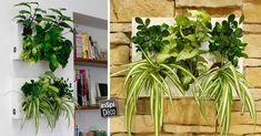 Réaliser un cadre végétal. Voici pour vous aujourd'hui une petite sélection de 20 idées créatives pour réaliser un cadre végétal! Très original pour décorer