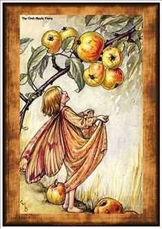 'The Crab Apple Fairy' By Cicely Mary Barker - A Beautifu... https://www.amazon.co.uk/dp/B079WNBM52/ref=cm_sw_r_pi_dp_x_ujLIAb7BBM30Z