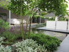 Wasserelemente by ADEZZ planters & Pond Design, Landscape Design, Garden Features, Water Features, Formal Gardens, Outdoor Gardens, Contemporary Garden Design, Garden Architecture, Water Garden