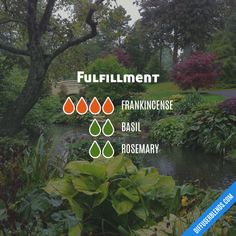 Fulfillment — Essential Oil Diffuser Blend