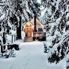 a winter blog