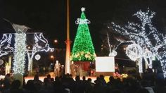 페미경 TV 2014 복정동 빛축제 점등식