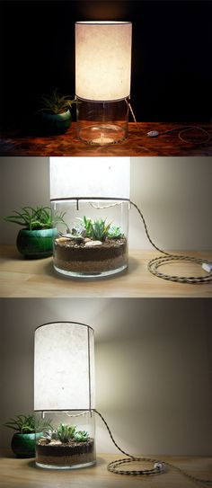 Lámpara con pequeño terrario
