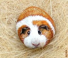 Hand painted rock. Guinea pig 7. | Flickr: Intercambio de fotos