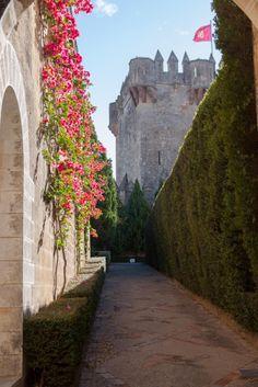 Un paseo por el Castillo de Almodóvar, Almodóvar del Río, Córdoba, España. #castles #spain
