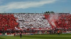 Perugia-Pro Vercelli: Forventede startopstillinger!