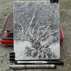 """Mi libreta para árboles. Lidia Barragán. (Moleskine 9 x 14 cm - 3 1/2"""" x 5 1/2""""…"""