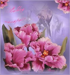 5 Rose, Flowers, Plants, Blog, Jewelry, Pink, Jewlery, Jewerly, Schmuck