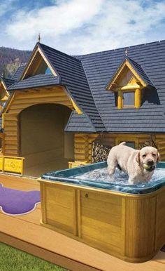 12 casas para perros que te dejaran de boca abierta 4 0