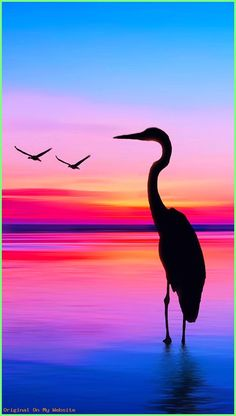 Ideas Sunset Silhouette Art Painting Beautiful A few varied photos that I like Sunset Silhouette, Silhouette Painting, Bird Silhouette Art, Simple Acrylic Paintings, Acrylic Art, Acrylic Painting Canvas, Sunrise Painting, Beach Sunset Painting, Sunset Paintings