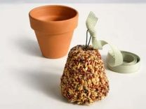 @ Stacie Arnold- good craft to do with Mav (and Matt :) how to make a bird seed bell fun for kids