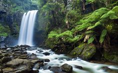 Waterfall | Waterfall, wallpaper, brothersoft, wallpapers, wfiles - 656923