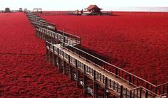 14 Of Asia's Most Beautiful Spots Yet To Be Discovered By Tourists - TheSmartLocal