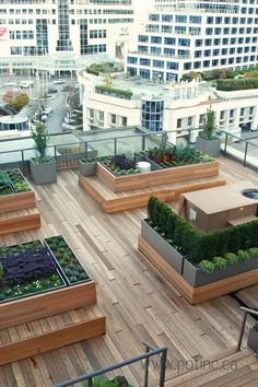Rooftop gardens | The best rooftop design ideas for your home! See more inspiring images on our board at http://www.pinterest.com/homedsgnideas/rooftop-design-ideas/