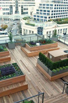 Jardines de terraza