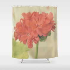 Zonal Pelargonium Flower Shower Curtain by ARTbyJWP from Society6 #showercurtains #showercurtain #bathroom #bathroomdecor #floral ---   Customize your bathroom decor with unique shower curtains designed by artists around the world. Made from 100% polyester our designer shower curtains are printed in the USA and feature a 12 button-hole top for simple hanging. The easy care material allows for machine wash and dry maintenance. Curtain rod, shower curtain liner and hooks not included.