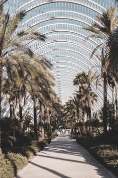 Spain is exciting and diverse, adopt your inner paintings dork at El Prado in The town, wander the busy footpath along the Med in Barcelona . Valencia City, Santiago Calatrava, City Wallpaper, City Aesthetic, Spain Travel, Holiday Destinations, Album, Travel Inspiration, Beautiful Places