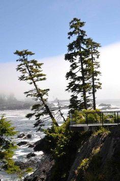View from Black Rock Resort, Ucluelet B.C.