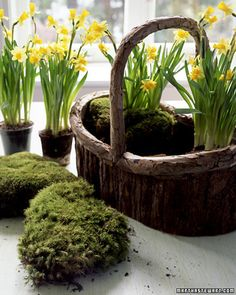 Daffodils and Pom-Pom Chicks Basket - Martha Stewart Holiday & Seasonal Crafts