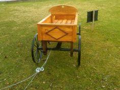 Pony wagon back view