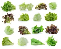 Lettuce and Type 2 Diabetes