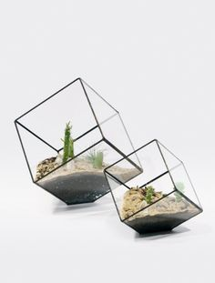 From Design for Mankind blog - Score + Solder has multi-faceted terrariums