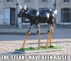 Cow Pun--ishment