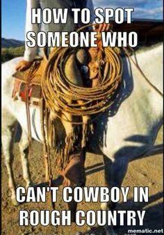 da815b93e402310456ac85f9eb2b9905 memes cowboy pin by lou purchase on cowboy memes & rants pinterest cowboys memes