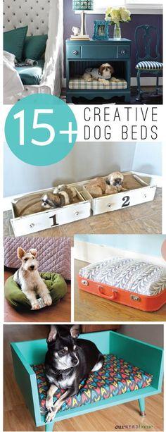 15+ creativo fai da te Letti per cani | landeelu.com Tante idee carina per fare un letto di divertimento per il vostro bambino pelliccia !: