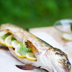 HAUKI ON KALA – KOKONAISENA GRILLATTU HAUKI Fresh Rolls, Fish, Meat, Ethnic Recipes, Pisces