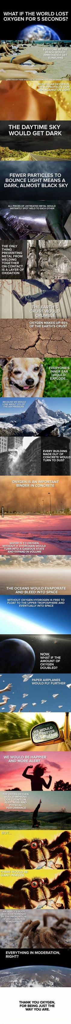 Funny pictures about If The World Lost Oxygen For 5 Seconds. Oh, and cool pics about If The World Lost Oxygen For 5 Seconds. Also, If The World Lost Oxygen For 5 Seconds photos. All Nature, Science And Nature, The More You Know, Good To Know, Weird Facts, Fun Facts, Random Facts, Crazy Facts, The Babadook