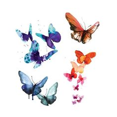 Painted by Stina Persson in her rich and distinctive style, these watercolor butterflies are sure to lift your spirits and color your limbs beautiful. The Watercolor Butterflies Set includes Aqua Butt